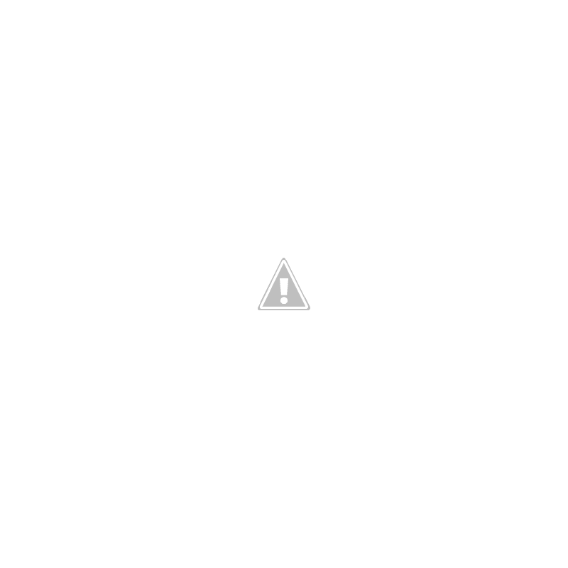 Levels of Market Efficiency / EMH