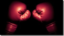 Best-Boxing-Gloves1