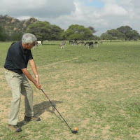 Chuck hitting.. notice the donkeys on the fairway