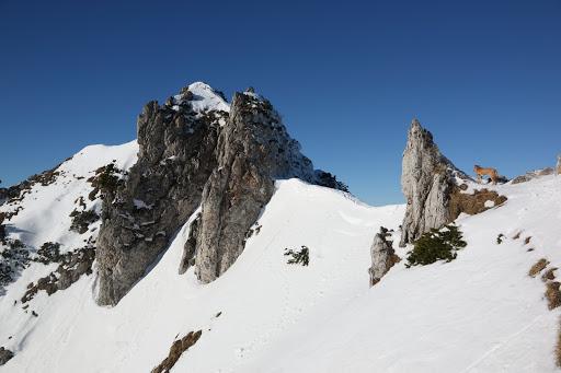 Na vrchol