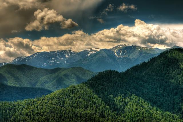Montagnes de l'Altai, juillet 2008. Photo : Psamtik