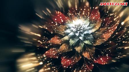 Hình nền hoa 3D sống động và tràn ngập màu sắc