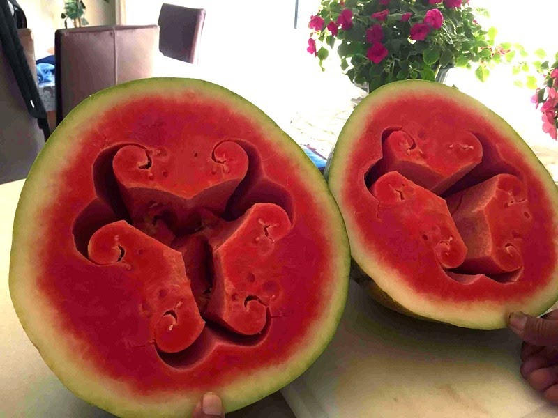 hollow-heart-watermelon-4