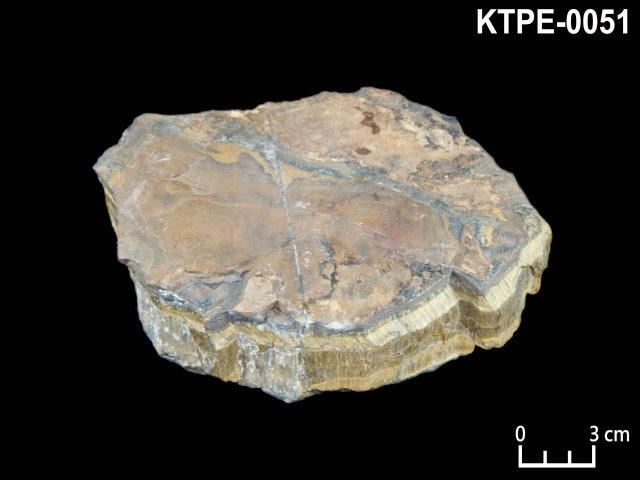 KTPE-0051 虎眼石