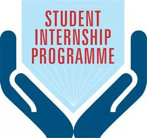CALL FOR APPLICATION: CIVE INTERNSHIP PROGRAMME