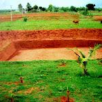 Watershed Project - Sedappatti, Madurai