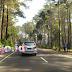 Hutan Pinus Gunung Tangkuban Parahu Kawasan Wisata dan Tempat Bersantai yang Asri