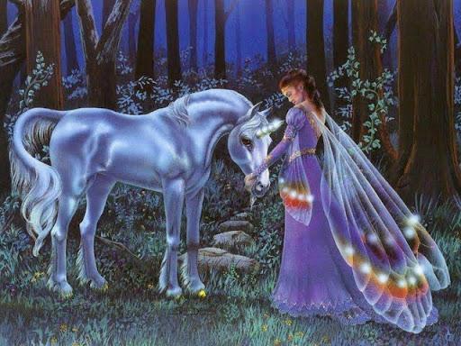 unicorn and fairy.jpg