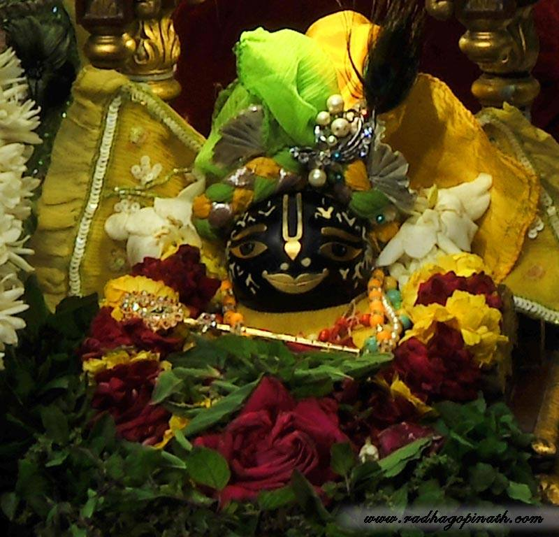 ISKCON Chowpatty Deity Darshan 12 Feb 2016 (17)