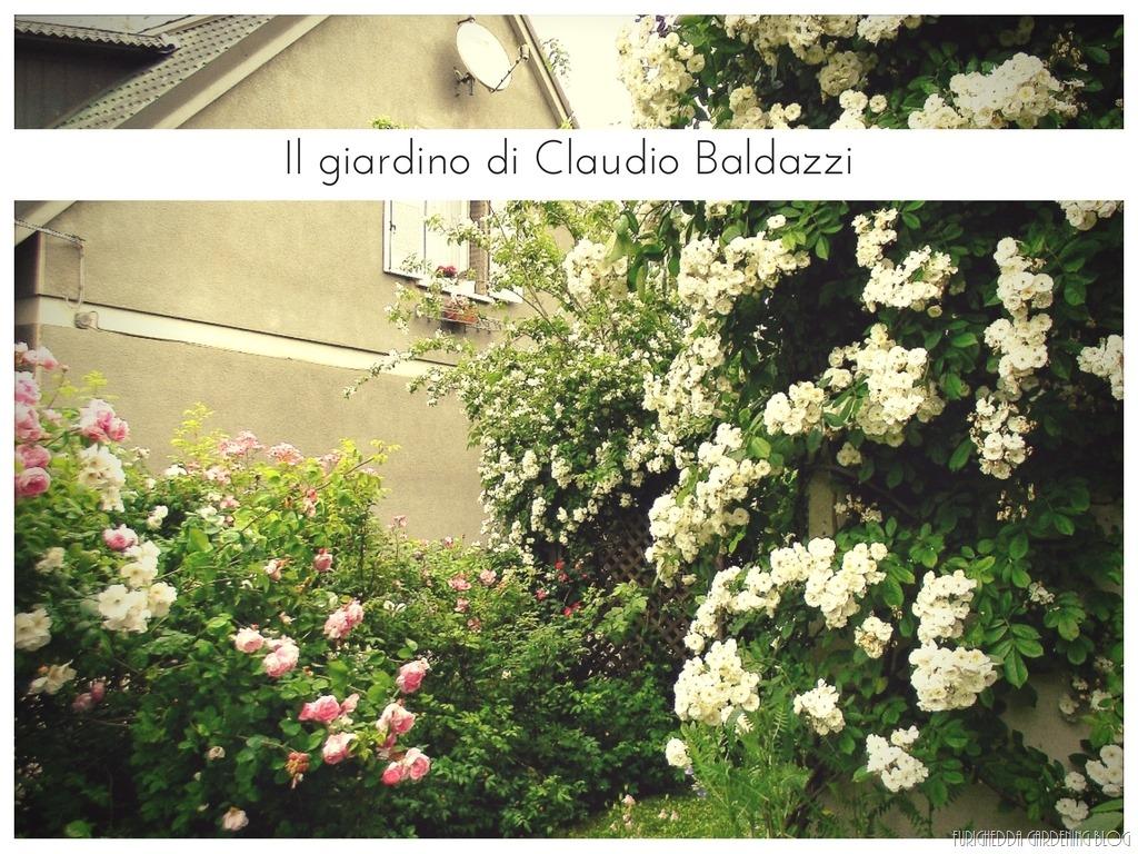 [Il+giardino+di+Claudio+%288%29%5B7%5D]
