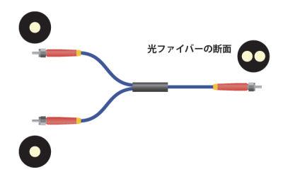 2分岐光ファイバーの構造