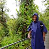06-23-13 Big Island Waterfalls, Travel to Kauai - IMGP8855.JPG
