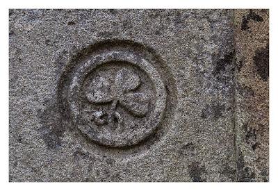 Rock of Cashel - das irische Kleeblatt