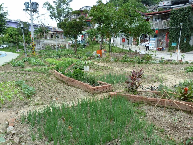 TAIWAN.Taipei TREASURE HILL Un mini quartier réhabilité à 10 mn a pied de gonguan MRT - P1020543.JPG