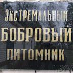 Суботник в Биосферном (Графском) заповеднике 117.jpg