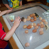 Childrens Museum 2015 - 116_8203.JPG
