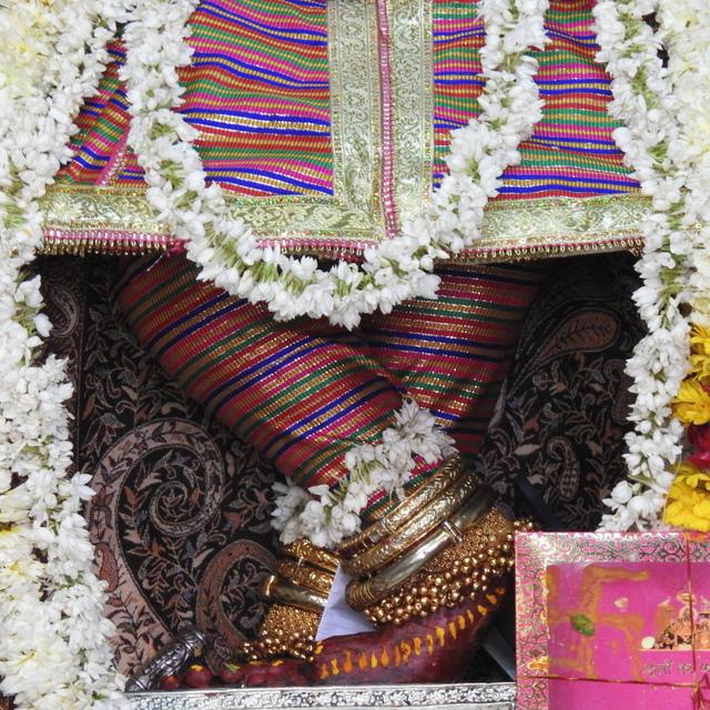 Radha Govind Devji Deity Darshan 02 Mar 2016 (9)