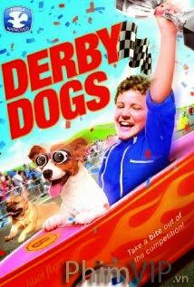 Cuộc Đua Danh Dự - Derby Dogs poster