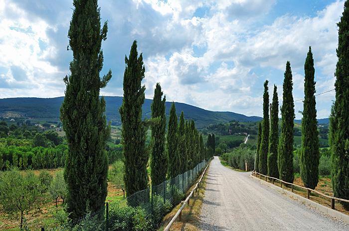Toscana05.JPG