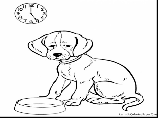 Great Realistic Animal Coloring Pages Dog With Animal Coloring Page And Animal  Coloring Pages For Toddlers