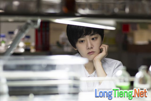Đây là 18 phim điện ảnh Hàn Quốc đáng mong chờ nhất trong năm 2017 - Ảnh 12.