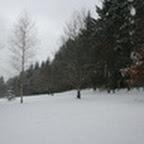 tn_lachaux-2010-12-10.jpg