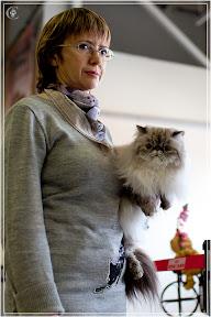 cats-show-24-03-2012-fife-spb-www.coonplanet.ru-007.jpg