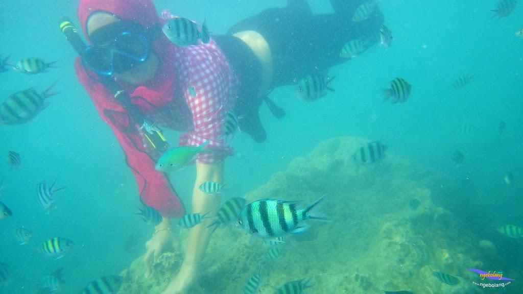 family trip pulau pari 090716 Pentax 23