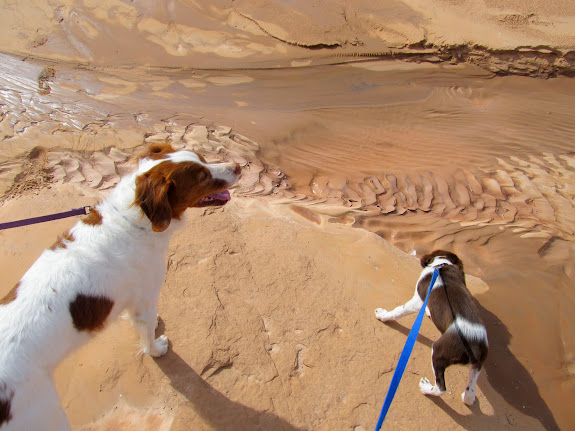 Torrey and Boulder at Goblin Valley