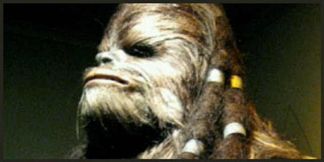 Wookie Star Wars