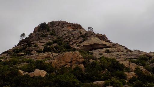 La face SSW de Punta di u Castellacciu escaladée à la montée