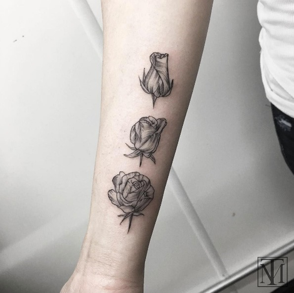 esta_flor_a_rosa