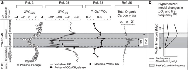 Summary of published data collected across the early Toarcian oceanic anoxic event. (a) Carbonate carbon isotope profile from Peniche and the organic carbon isotope profile from Yorkshire illustrating the step-wise nature of the negative excursion, and postulated pulses of light carbon release from Kemp et al.25 Plotted alongside are the osmium isotope profile from Mochras and total organic carbon content from the Yorkshire section. (b) Handoh and Lenton's12 hypothesized model changes in atmospheric oxygen and wildfire frequency across an oceanic anoxic event, with period of modelled peak oxygen and wildfire frequency highlighted. Graphic: Baker, et al., 2017 / Nature Communications