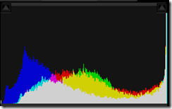 luminance histogram