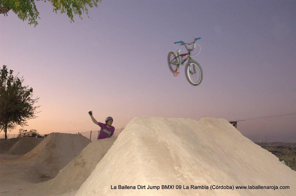 Ballena Dirt Jump BMX 2009 - BMX_09_0168.jpg