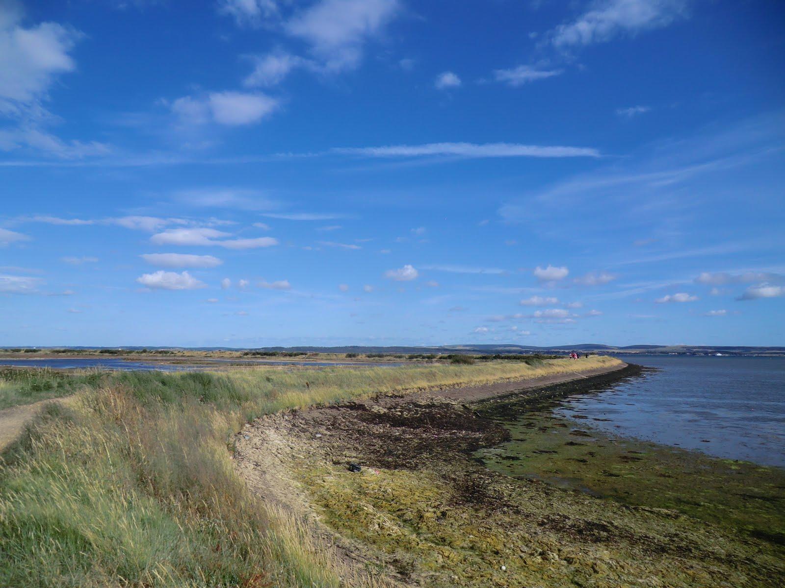 CIMG4490 The Solent Way around Normandy Marsh
