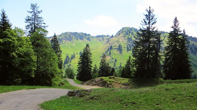 Blick auf Heidenkopf 1.683 Meter und Girenkopf 1685 Meter Nagelfluhkette