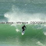 _DSC6202.thumb.jpg