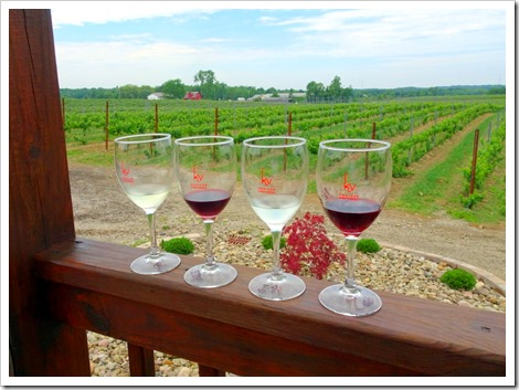 Kosicek Vineyards