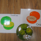Introduction to Orange and Sweetlime (Playgroup) 15-9-14