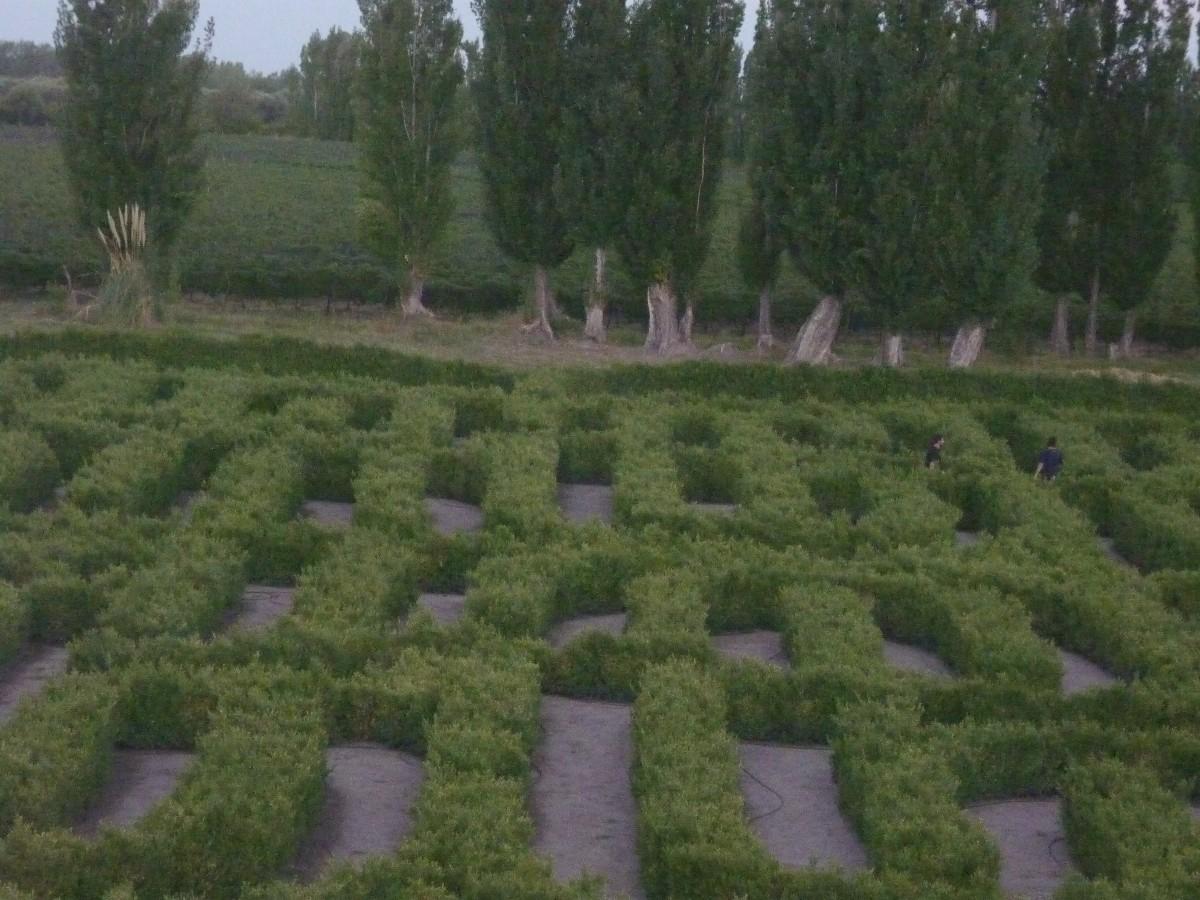 Brisas de oto o laberinto en homenaje a borges for Borges el jardin
