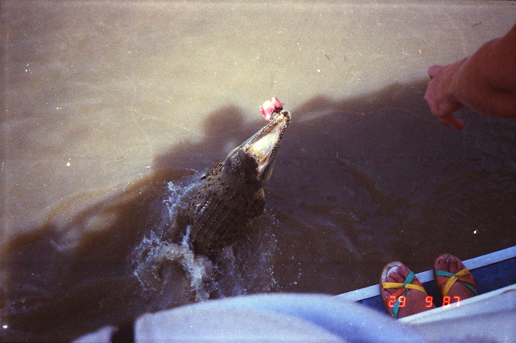 6080Adelaide River Croc Tour
