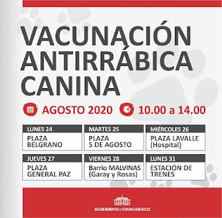 Mascotas rabia vacuna Chacabuco