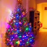 Christmastime - 116_6389.JPG