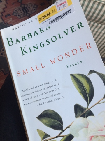 Barbara Kingsolver Small Wonder Essay College Paper Example    Barbara Kingsolver Small Wonder Essay Mba Assignment Helper also Business Essay Writing  Bullying Essay Thesis