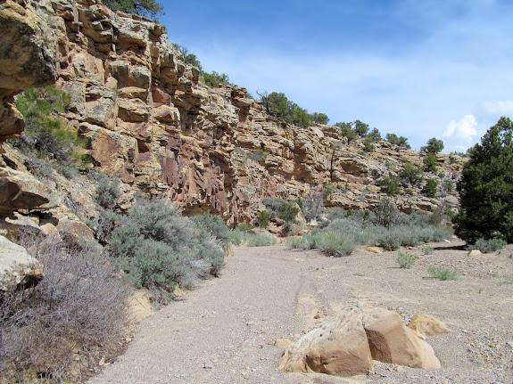 Little Park Wash side canyon