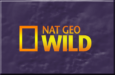 Canal national-wild Online gratis