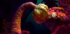 24 un monstre marin 2