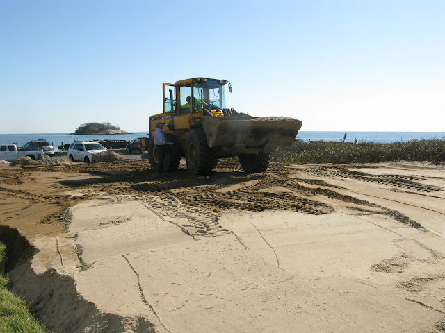 West Wharf Dune Restoration - IMG_8251.JPG