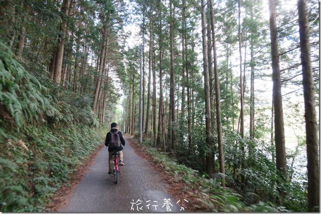 日本四國 中村 四萬十川 (42)